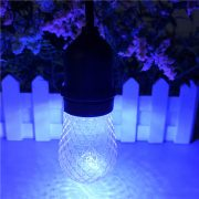 S14 LED Bulb Faceted blue