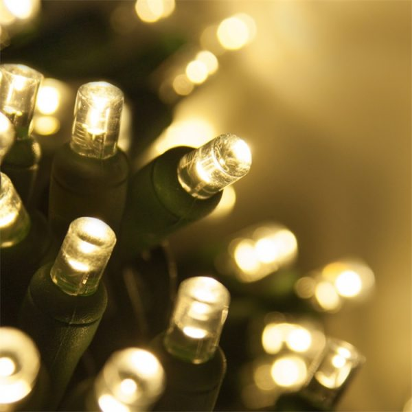 5MM Mini String Lights18